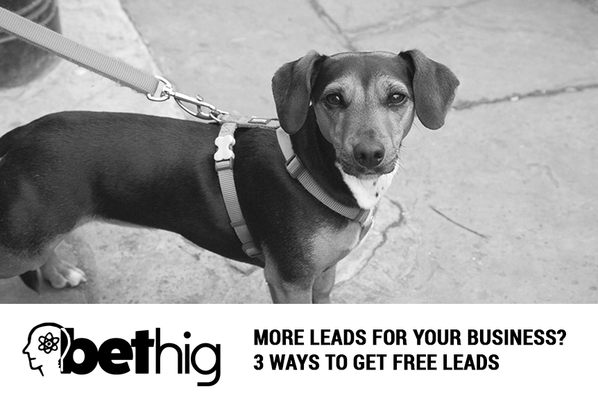 More Leads For Your Business? 3 Ways to Get Free Leads